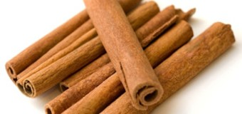 The spice from South India – Cinnamon (Dalchini / Karuvapatta) for aroma & healthy living.