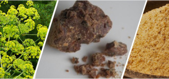 Asafoetida-Kayam Spice for Indian Cusine
