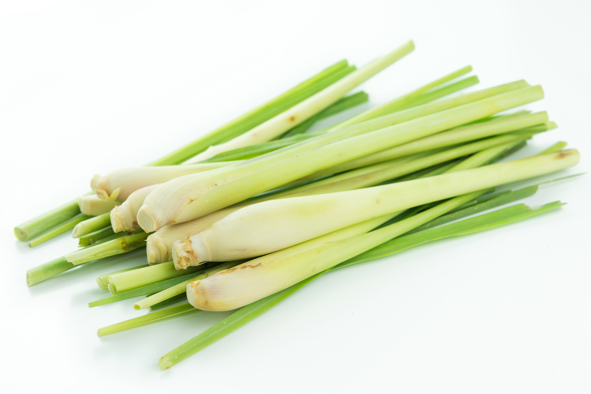 Lemongrass Stalk