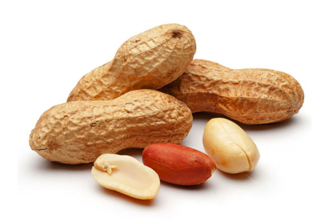Groundnuts and its health benefits