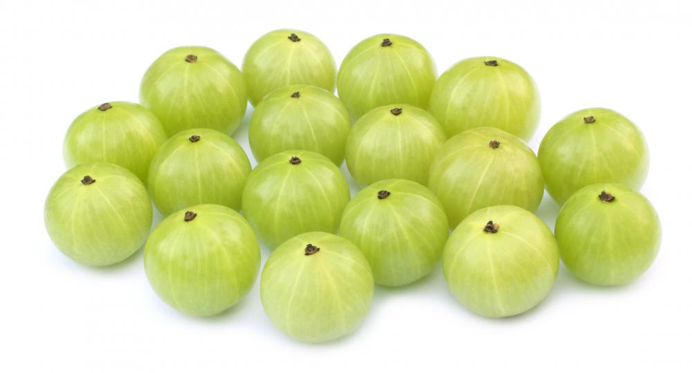 how to grow indian gooseberry