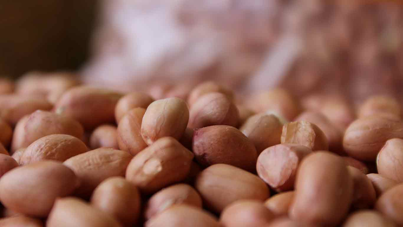 Peanuts and its health benefits