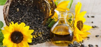 Sunflower Oil – A Natural oil with multiple health benefits