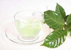 White Tea  - Supreme drink Remarkable heart tonic.