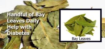 Bay leaf- a sacred leaf used in cooking