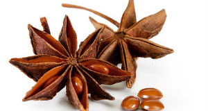 Star Anise – (Thakkolam) – A distinctive flavor in Indian Homes