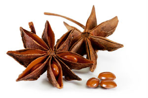 Star Anise (Thakkolam ) - The Secret ingredient in Indian Cooking - A distinctive flavor in Indian Homes