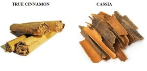 Original-Cinnamon-Cassia