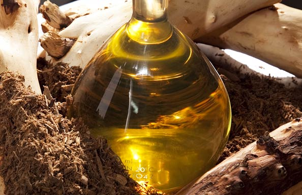 Whats it about sandalwood oil that makes it famous among beauticians