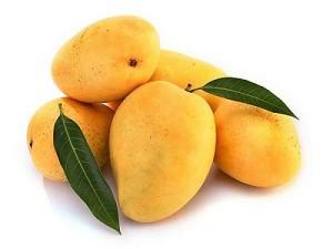 mango-fruit-mampazham-kerala fruits