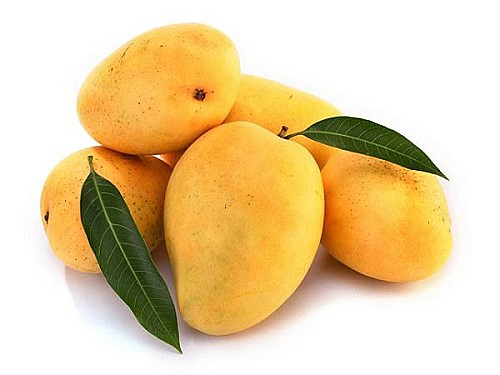 Mango exports to slow down this year on lower production feels exporters