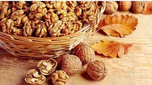 Walnuts - An essential food for health