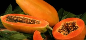 Have you heard of the medicinal benefits of Papaya in treating Dengue Fever?