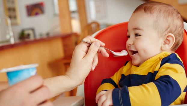 Babies health powder recipes home made health powder
