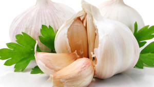 Garlic palnts-raw garlic-garlic medicinal uses