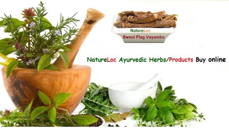 Natureloc Sweet Flag Vayambu buy online
