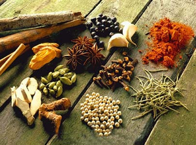 Spices -garam masala -nature loc but on line spices