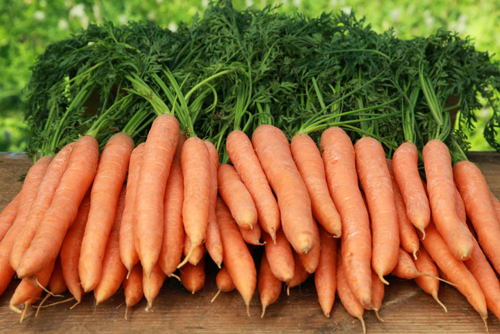 What's the benefit of having crunchy and nutritious roots called carrots