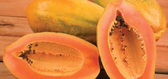 Papaya | 5 Interesting Health Benefits | Side Effects | NatureLoC