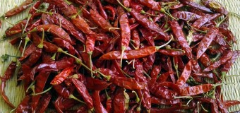 Chillies as food,spice and medicine – whole lot of fragrance and flavour to Indian cuisine