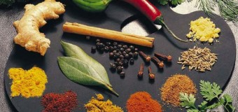 Spices in health giving and anti disease role