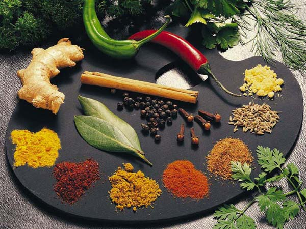spices and herbs _best_healing_herbs_and_spices Ntureloc