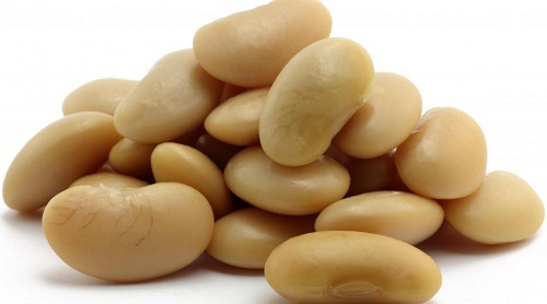 white-beans-health benefits