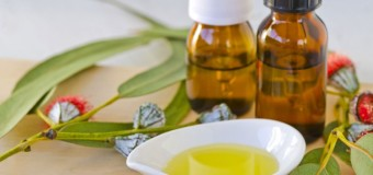 Essential health benefits of using Eucalyptus oil or Eucali thailam