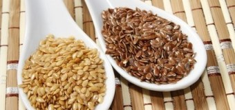 Flax Seeds – Healthy Tiny Seed With  Wonderful Nutritional Gift.