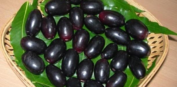 Jamun-Fruit-Naaval-Pazham-Njara pazham