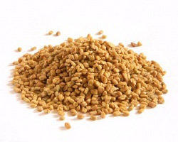 fenugreek-seeds-fennu greek powder