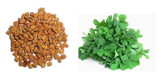 fenugreek seeds medicinal values health benefits
