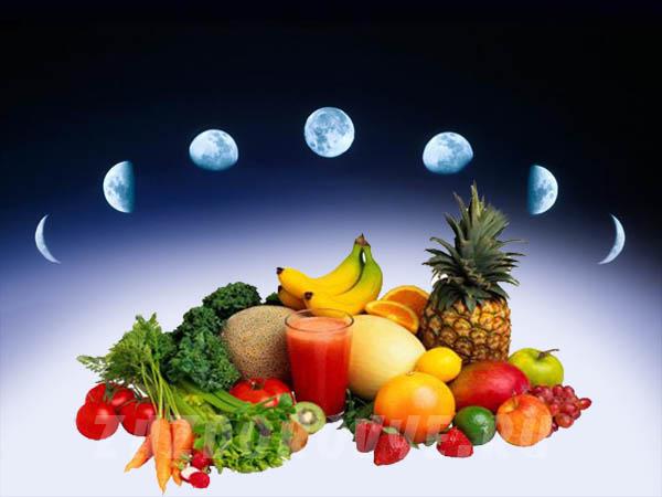 lunar diet moon diet