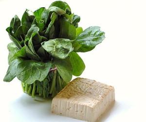 palak with tofu paneer
