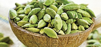 Cardamom (elachi) – A delicious spice species and its uses