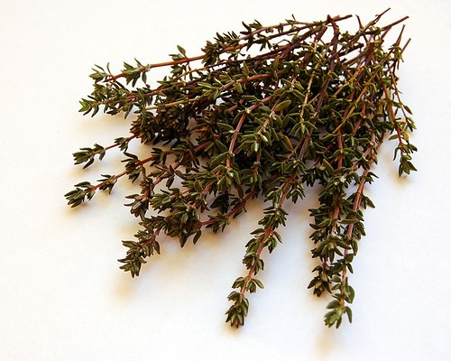 Thyme An Aromatic And Medicinal Herb Healthyliving
