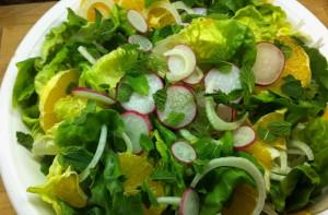 fresh mushroom radish basil parsley leaves salad