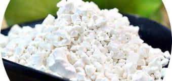 What is arrowroot powder (koova podi)?