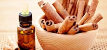 Cinnamon bark (karuvappatta) – Health benefits of cinnamon