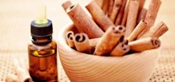 Cinnamon bark (karuvappatta) – Health benefits of cinnamon