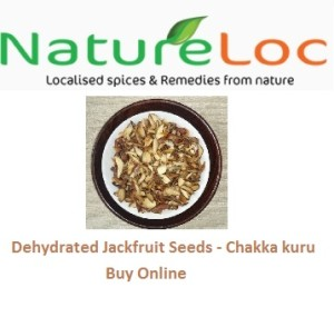 Jakcfruit seeds buy online