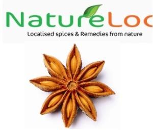 Natureloc Star Anise buy online