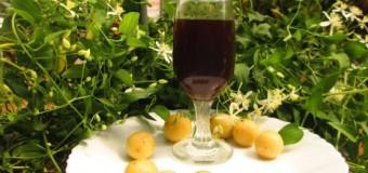 Traditional Gooseberry Wine Recipe