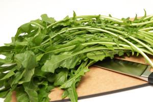 dandelion-greens leaf health beneifits