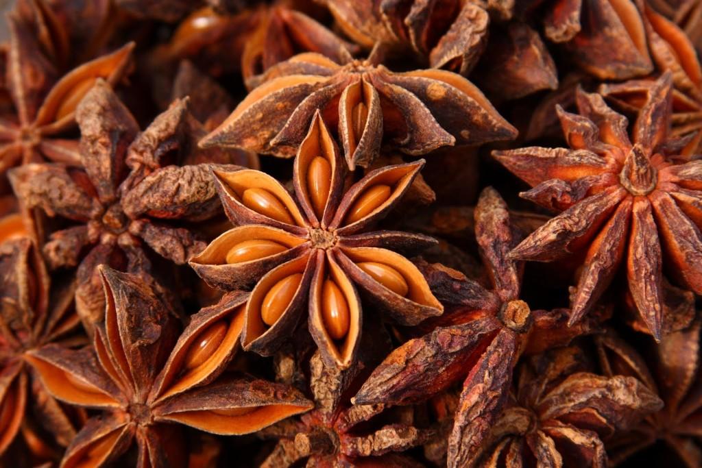 star-anise health beneifts natureloc