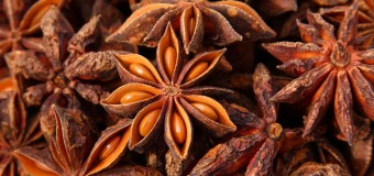 Why is Star anise valued as a potential Cancer preventive agent?