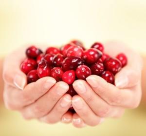 Cranberries-handful make a different natureloc