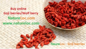 Goji berries wolf berries buy online natureloc