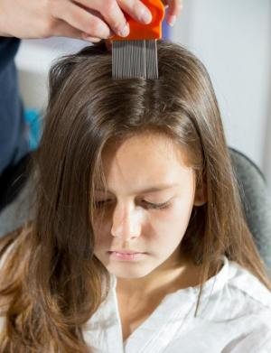 use oil for headlice in chidlren