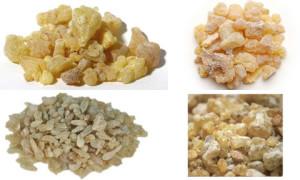Frankincense or kunthirikkam buy online natureloc